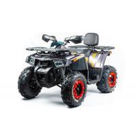 Motoland WILD TRACK X PRO 200 серый