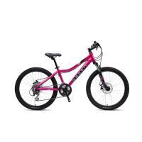 Велосипед GREEN 19 Kids 20 пурпурный